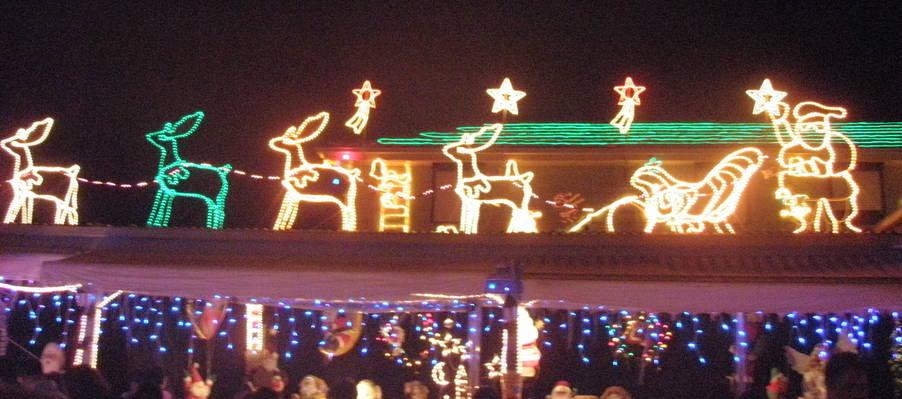 CHristmas lights - Santa and reindeer