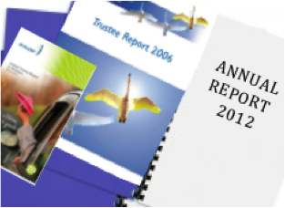Some example annual report covers