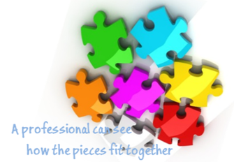 Professionals see how pieces fit together