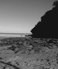 Beach at Ricketts Point, Victoria, in black and white